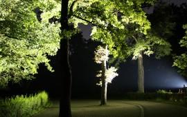 Weg- und Gartenbeleuchtung
